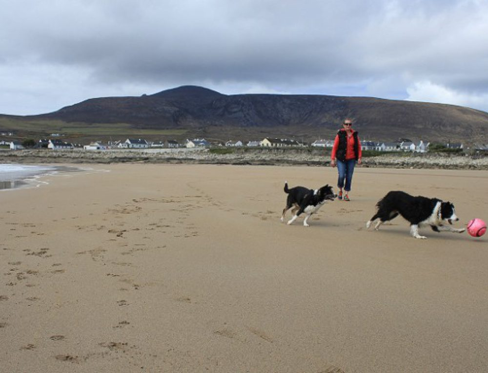 Missing for 33 years, this beach reappears in Ireland